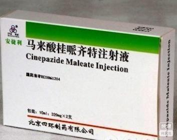 马来酸桂哌齐特注射液(马