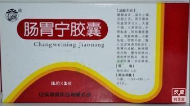 仙河制药(肠胃宁胶囊)