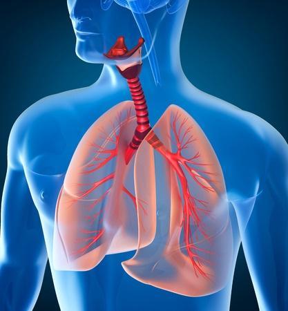 澳门永利娱乐场的网站思考:不以咳嗽起病的小儿肺炎