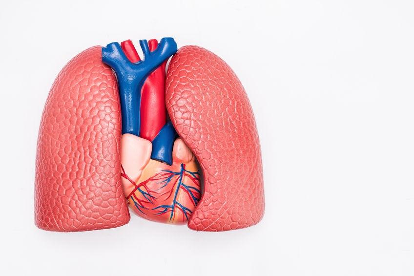 围产期心肌病治疗和预后