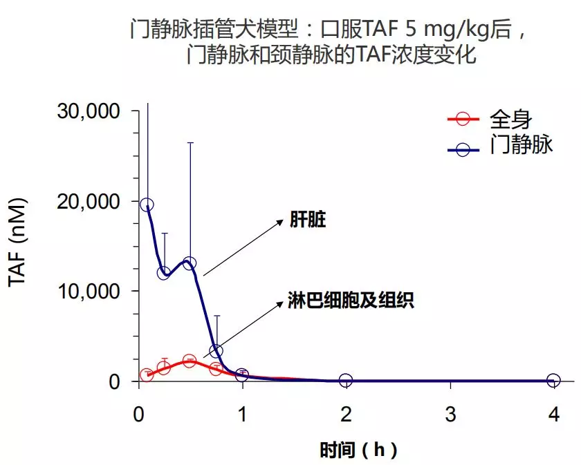 从TDF到TAF,为了更好地管理慢乙肝