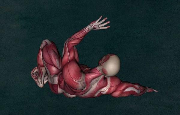 胸腺瘤術后重癥肌無力1例分析